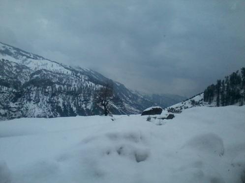 near solang valley, kullu manali, himachal pradesh.