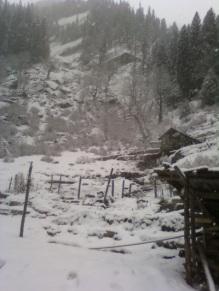 kheer ganga trekking, amazing and majestic nature.