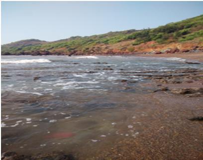 Goa Beach Pic1
