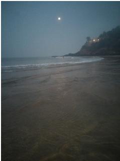 Goa Beach Pic4