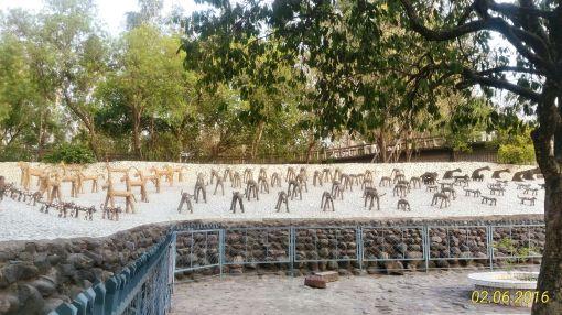 Rock Garden Chandigarh 7