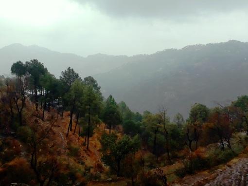 kasauli-hills-himachal-1