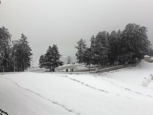 kasauli-hills-himachal-2