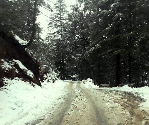 kufri-himachal-snowfall-3
